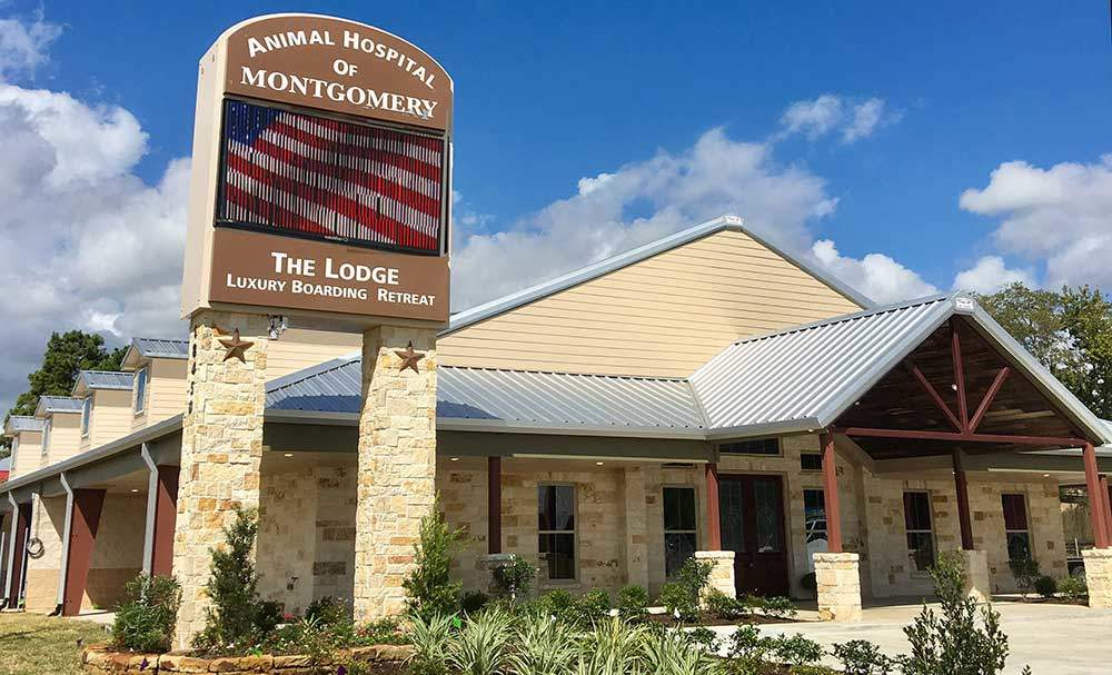 The Lodge Luxury Boarding Retreat | by Animal Hospital of